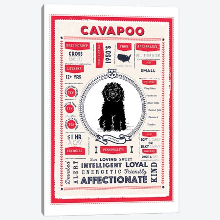 Cavapoo Infographic Red Canvas Print #PPX207} by PaperPaintPixels Art Print