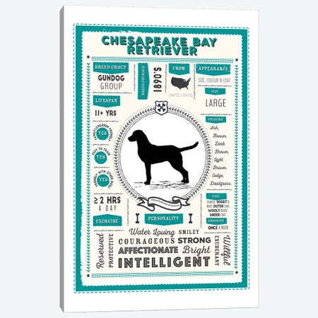 Chesapeake Bay Retriever Infographic Blue Canvas Print #PPX208} by PaperPaintPixels Canvas Artwork
