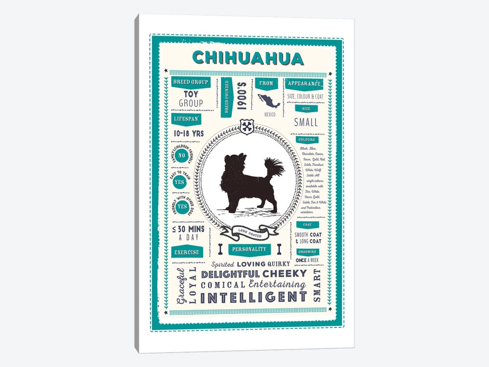 Chihuahua - Long Coated Infographic Blue by PaperPaintPixels 1-piece Art Print