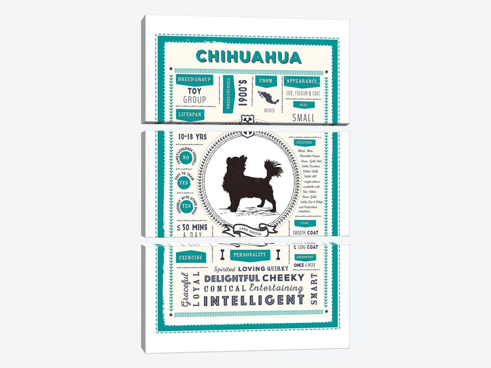 Chihuahua - Long Coated Infographic Blue by PaperPaintPixels 3-piece Art Print