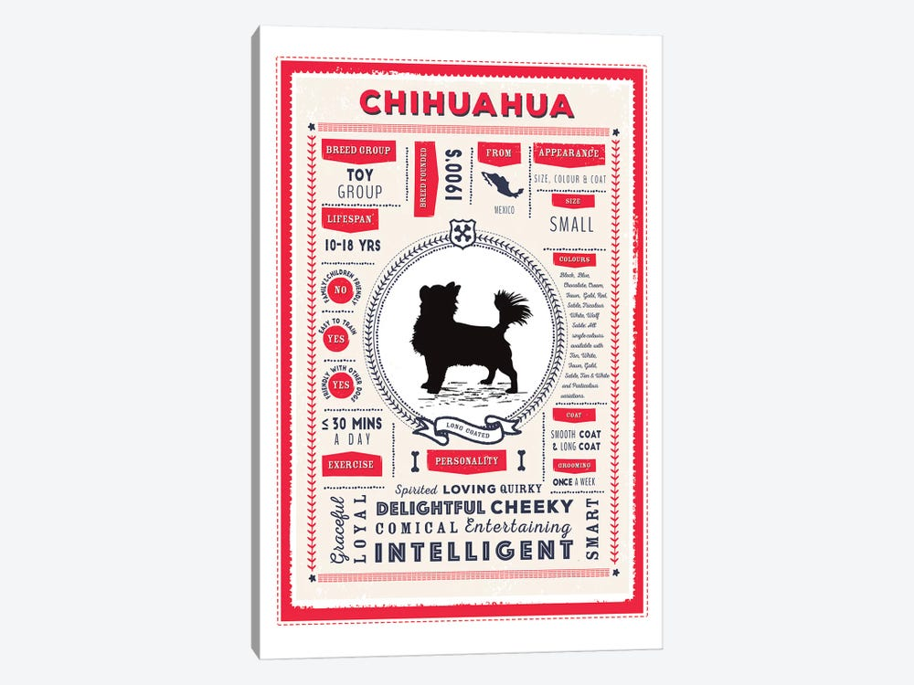 Chihuahua - Long Coated Infographic Red by PaperPaintPixels 1-piece Canvas Print