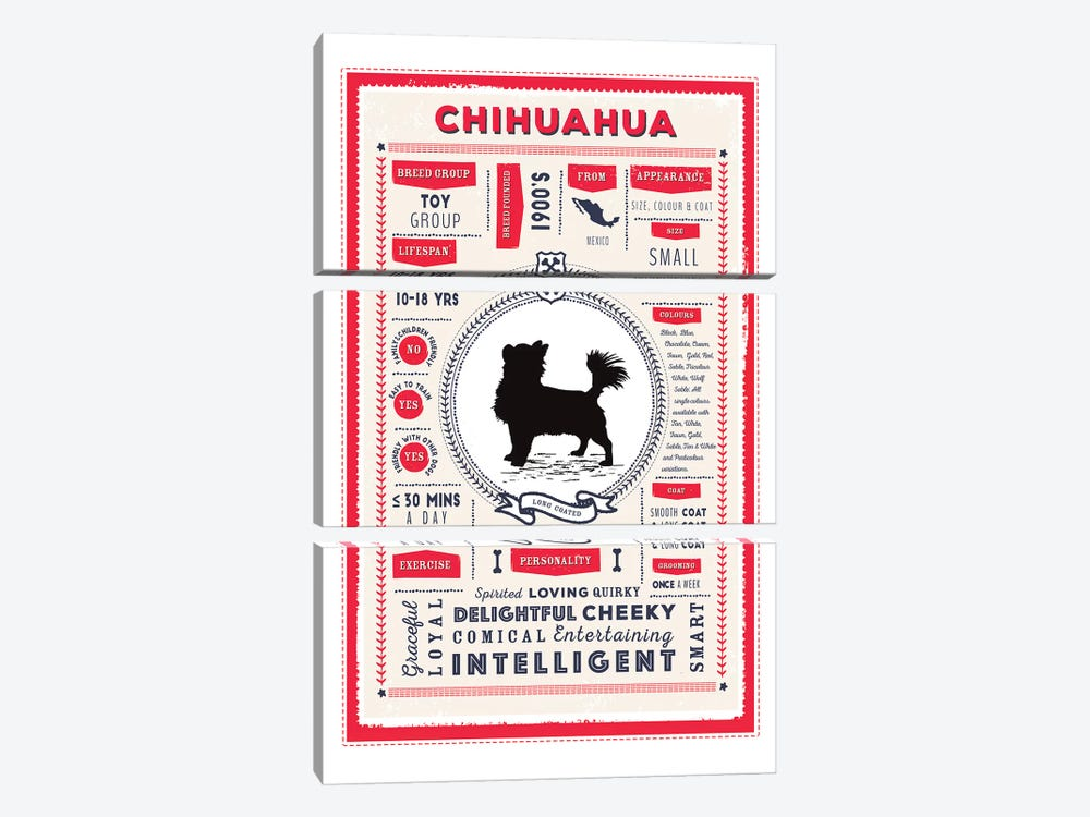Chihuahua - Long Coated Infographic Red by PaperPaintPixels 3-piece Art Print
