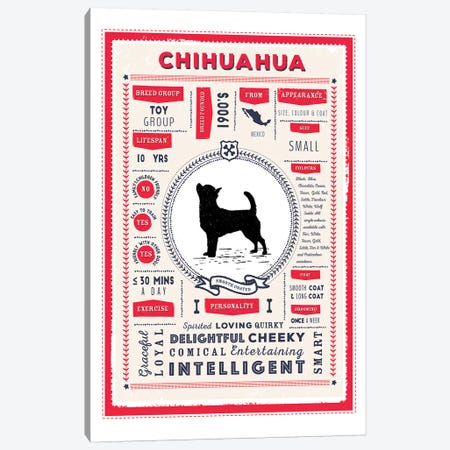 Chihuahua - Smooth Coated Infographic Red 3-Piece Canvas #PPX211} by PaperPaintPixels Canvas Print