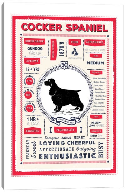 Cocker Spaniel Infographic Red Canvas Art Print