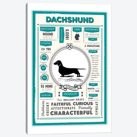 Dachshund Infographic Blue Canvas Print #PPX215} by PaperPaintPixels Canvas Art