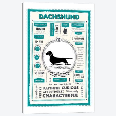 Dachshund Infographic Blue Canvas Print #PPX215} by PaperPaintPixels Canvas Art