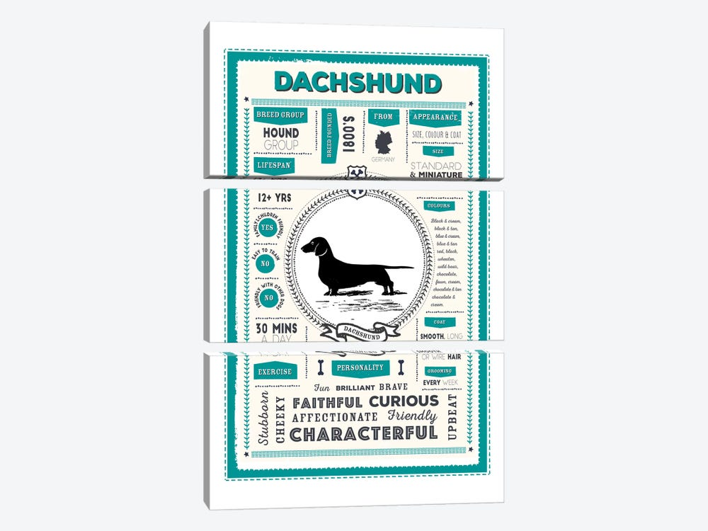 Dachshund Infographic Blue by PaperPaintPixels 3-piece Canvas Artwork