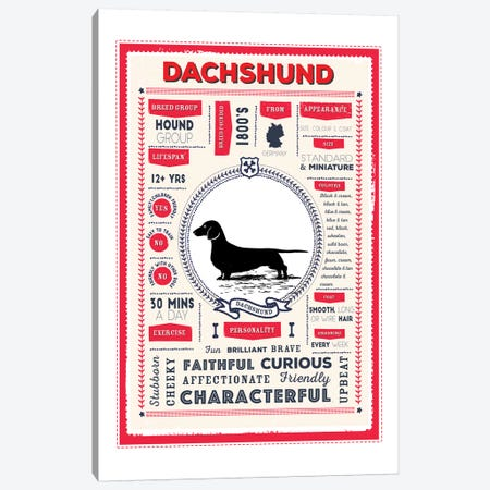 Dachshund Infographic Red Canvas Print #PPX216} by PaperPaintPixels Canvas Wall Art