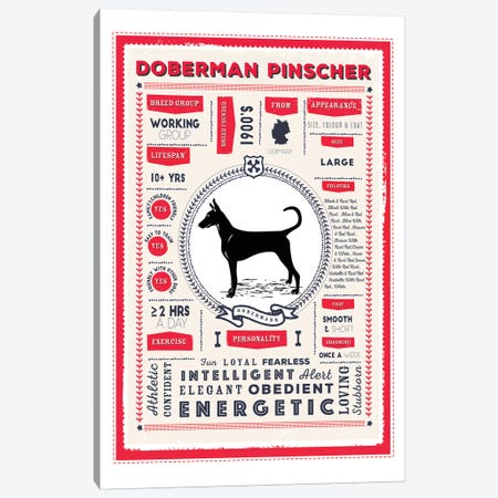 Doberman Pinscher Infographic Red Canvas Print #PPX218} by PaperPaintPixels Canvas Art Print