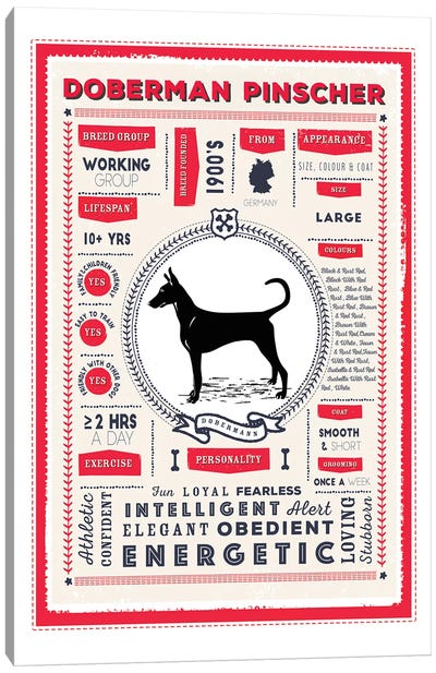 Doberman Pinscher Infographic Red Canvas Art Print