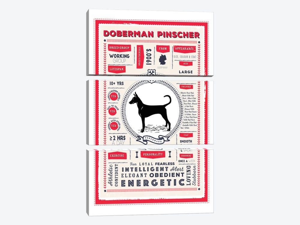 Doberman Pinscher Infographic Red by PaperPaintPixels 3-piece Art Print