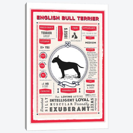 English Bull Terrier Infographic Red Canvas Print #PPX219} by PaperPaintPixels Canvas Art Print
