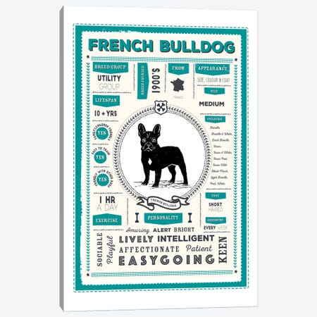 French Bulldog Infographic Blue Canvas Print #PPX222} by PaperPaintPixels Canvas Artwork