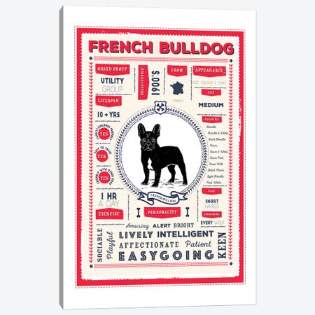 French Bulldog Infographic Red Canvas Print #PPX223} by PaperPaintPixels Canvas Wall Art