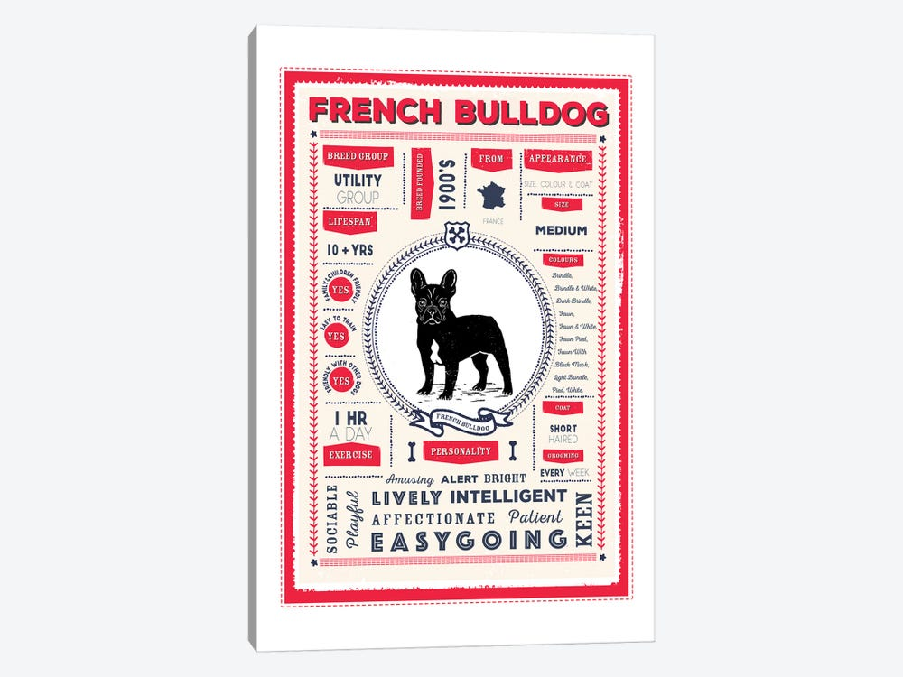 French Bulldog Infographic Red by PaperPaintPixels 1-piece Art Print