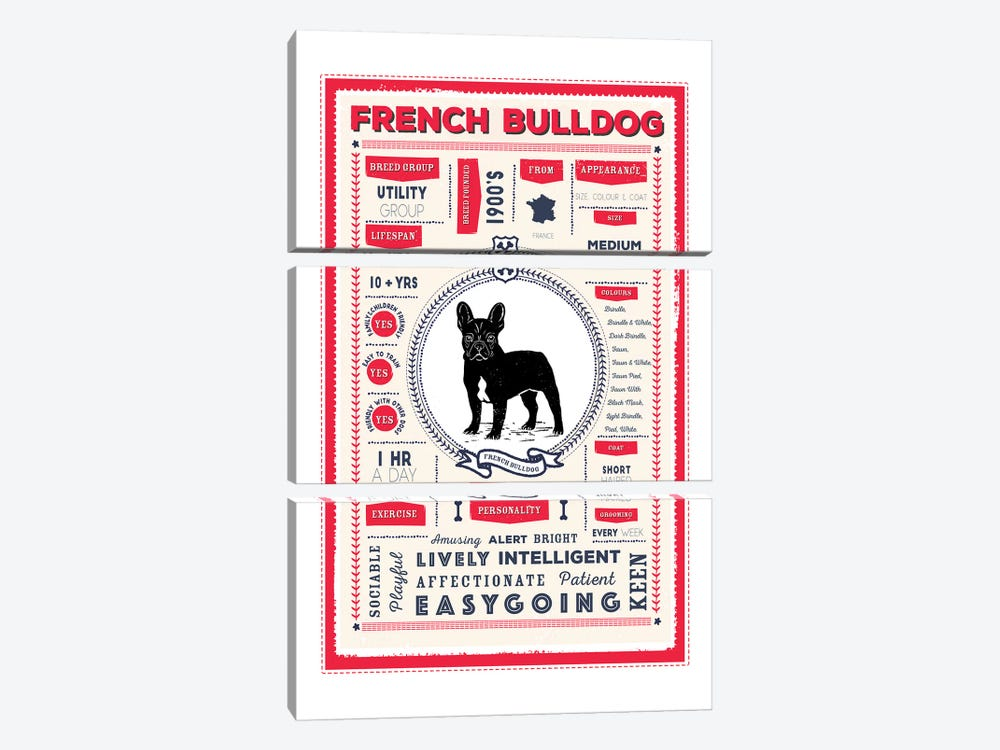 French Bulldog Infographic Red by PaperPaintPixels 3-piece Canvas Art Print