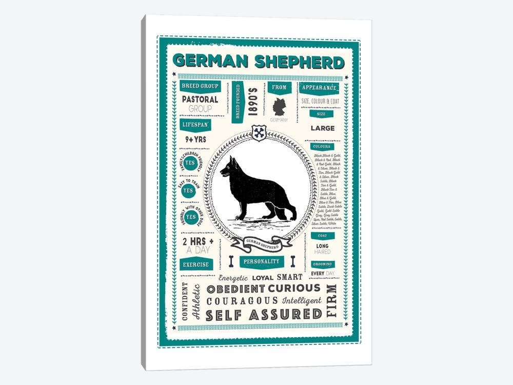 German Shepherd Infographic Blue by PaperPaintPixels 1-piece Canvas Artwork