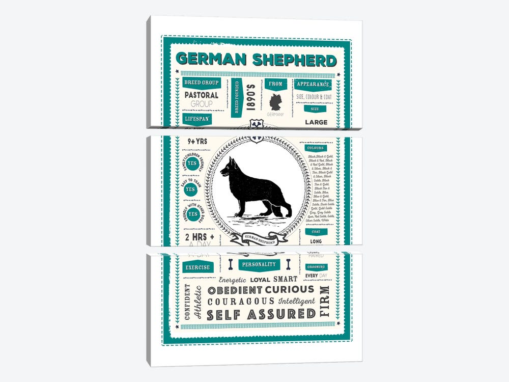 German Shepherd Infographic Blue by PaperPaintPixels 3-piece Canvas Wall Art