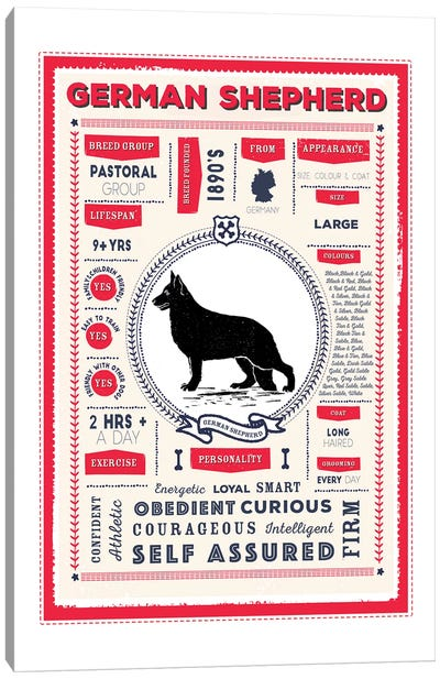 German Shepherd Infographic Red Canvas Art Print