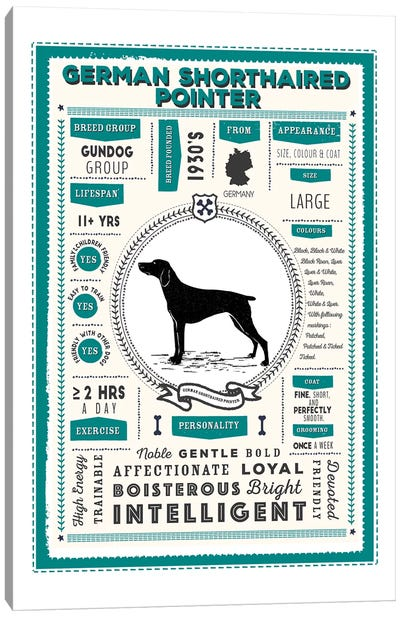 German Short Haired Pointer Infographic Blue Canvas Art Print