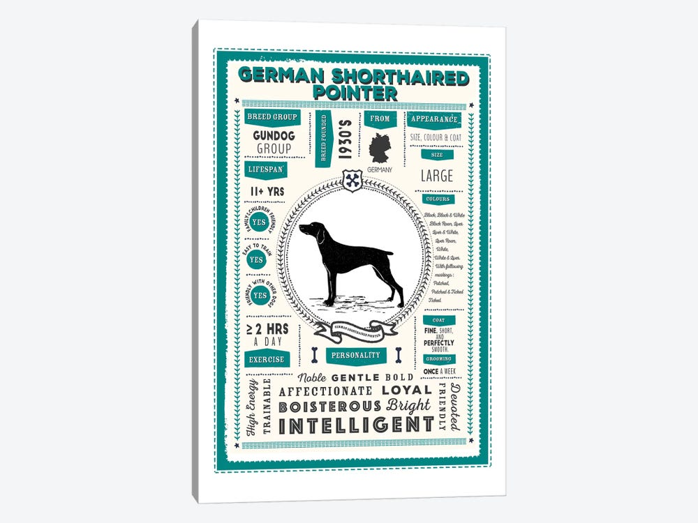German Short Haired Pointer Infographic Blue by PaperPaintPixels 1-piece Canvas Wall Art