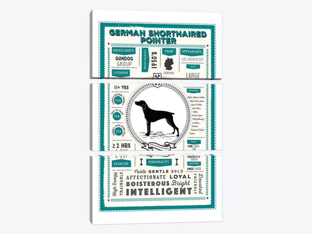 German Short Haired Pointer Infographic Blue by PaperPaintPixels 3-piece Canvas Artwork