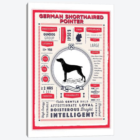 German Short Haired Pointer Infographic Red Canvas Print #PPX227} by PaperPaintPixels Canvas Art Print
