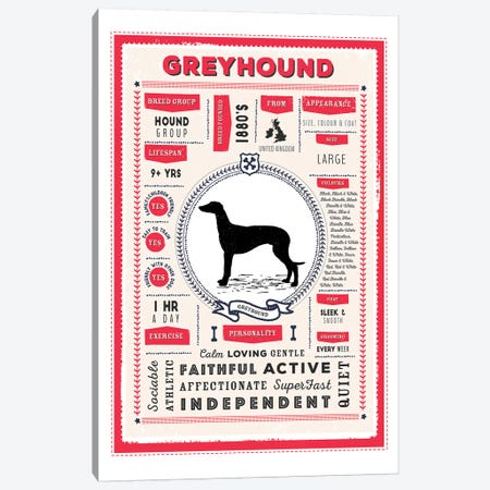 Greyhound Infographic Red Canvas Print #PPX230} by PaperPaintPixels Art Print