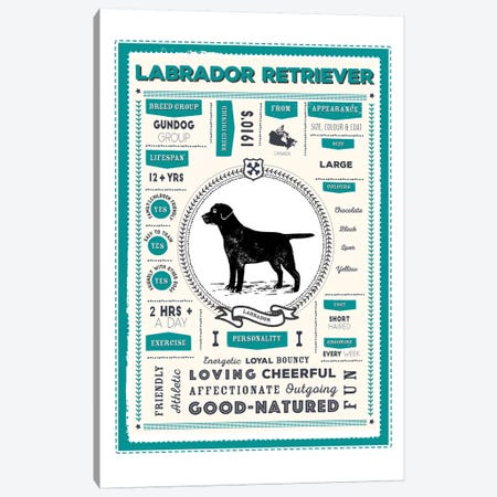 Labrador Retriever Infographic Blue Canvas Print #PPX235} by PaperPaintPixels Canvas Wall Art