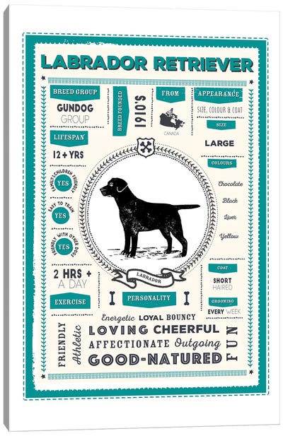 Labrador Retriever Infographic Blue Canvas Art Print