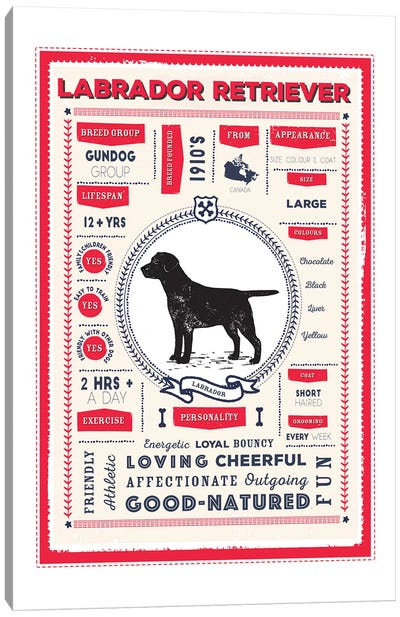 Labrador Retriever Infographic Red Canvas Art Print