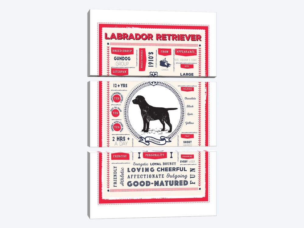 Labrador Retriever Infographic Red by PaperPaintPixels 3-piece Art Print