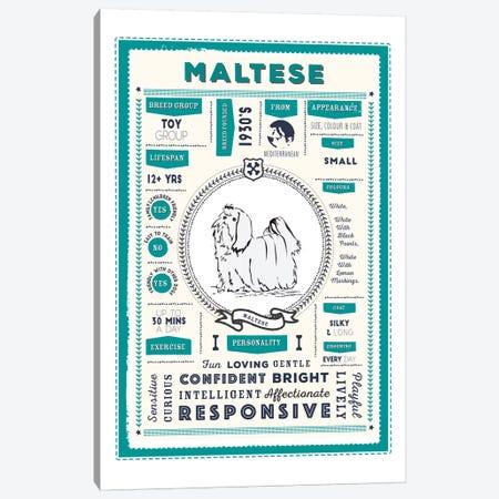 Maltese Infographic Blue Canvas Print #PPX239} by PaperPaintPixels Canvas Art Print