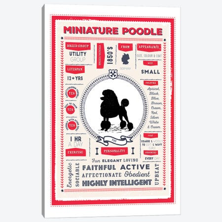 Miniature Poodle Infographic Red Canvas Print #PPX240} by PaperPaintPixels Canvas Wall Art
