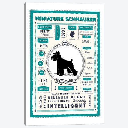 Miniature Schnauzer Infographic Blue Canvas Print #PPX241} by PaperPaintPixels Canvas Artwork