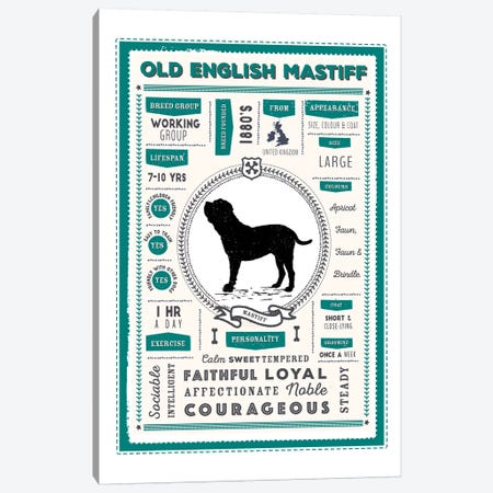 Old English Mastiff Infographic Blue Canvas Print #PPX242} by PaperPaintPixels Canvas Wall Art