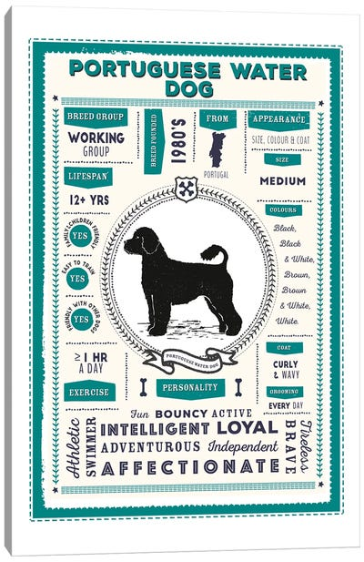 Portuguese Water Dog Infographic Blue Canvas Art Print