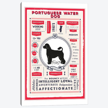 Portuguese Water Dog Infographic Red 3-Piece Canvas #PPX249} by PaperPaintPixels Canvas Art