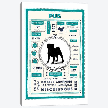 Pug Infographic Blue Canvas Print #PPX250} by PaperPaintPixels Canvas Art Print