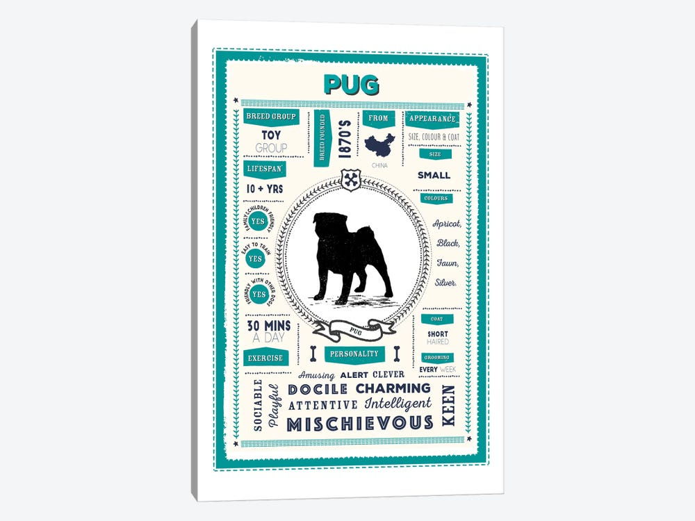 Pug Infographic Blue by PaperPaintPixels 1-piece Art Print