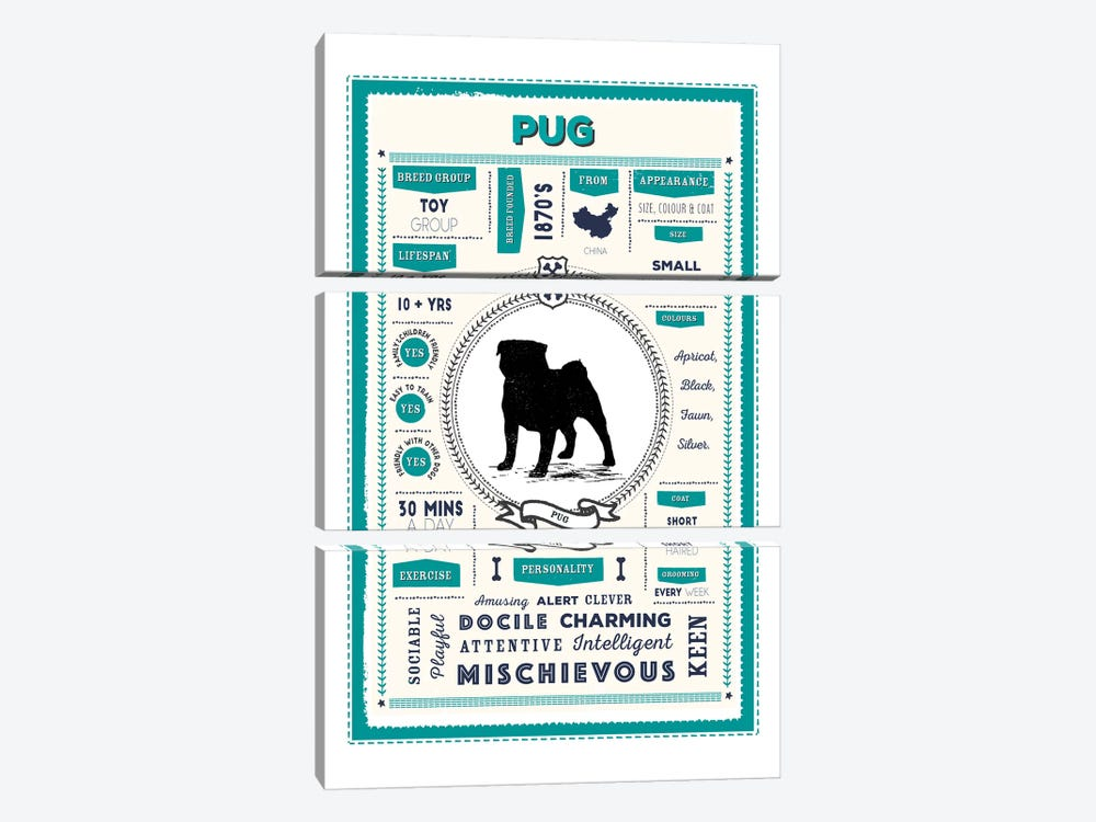 Pug Infographic Blue by PaperPaintPixels 3-piece Art Print