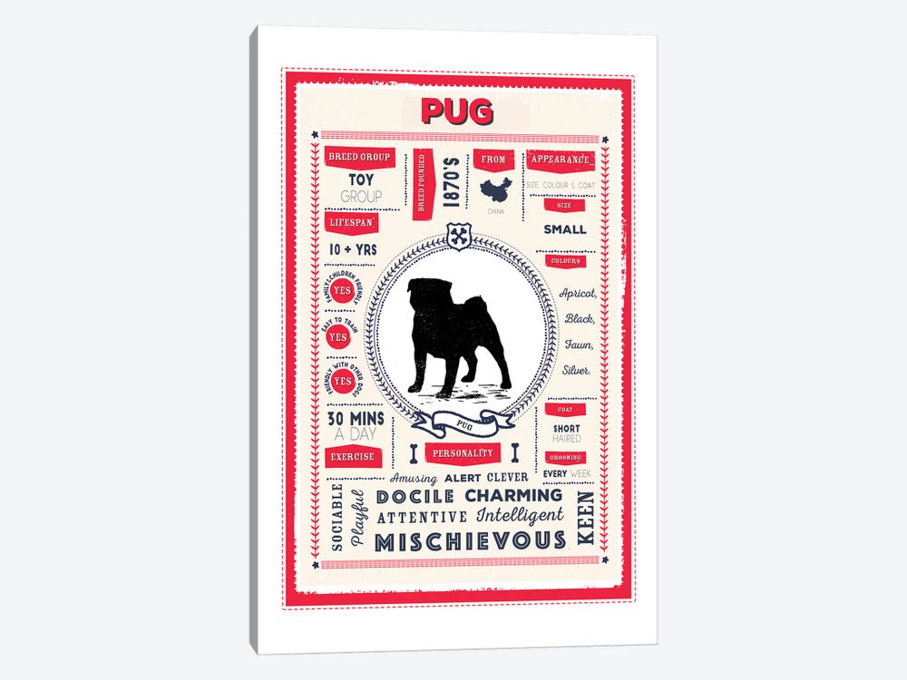 Pug Infographic Red by PaperPaintPixels 1-piece Canvas Artwork