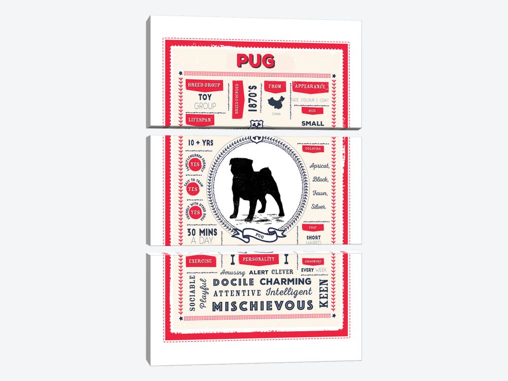 Pug Infographic Red by PaperPaintPixels 3-piece Canvas Art
