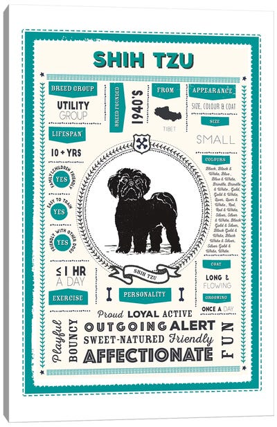 Shih Tzu Infographic Blue Canvas Art Print
