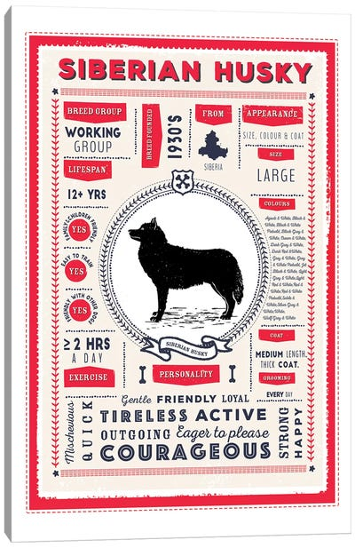 Siberian Husky Infographic Red Canvas Art Print