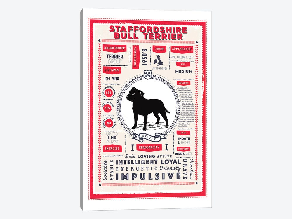 Staffordshire Bull Terrier Infographic Red by PaperPaintPixels 1-piece Canvas Wall Art