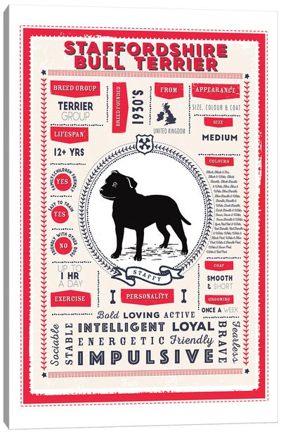 Staffordshire Bull Terrier Infographic Red Canvas Art Print