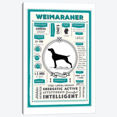 Weimaraner Infographic Blue Canvas Print #PPX261} by PaperPaintPixels Canvas Artwork