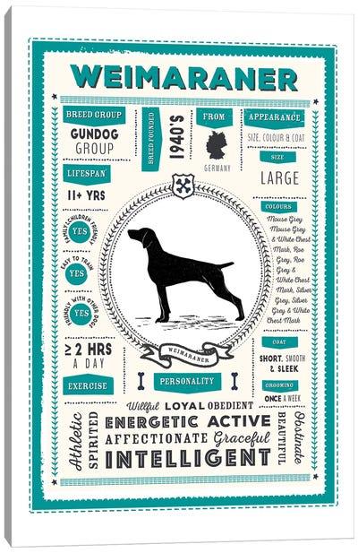 Weimaraner Infographic Blue Canvas Art Print