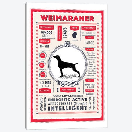 Weimaraner Infographic Red Canvas Print #PPX262} by PaperPaintPixels Canvas Art